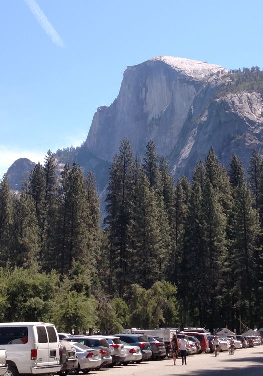 Half  Dome from Camp Curry