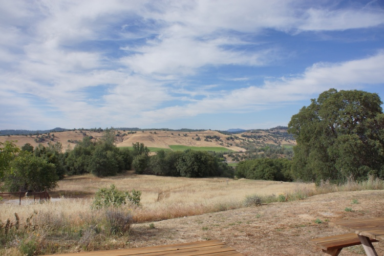 Beautiful Calaveras County countryside